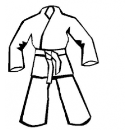 Lika's Karate Gear